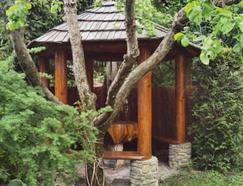 Zdjęcia ogród 3