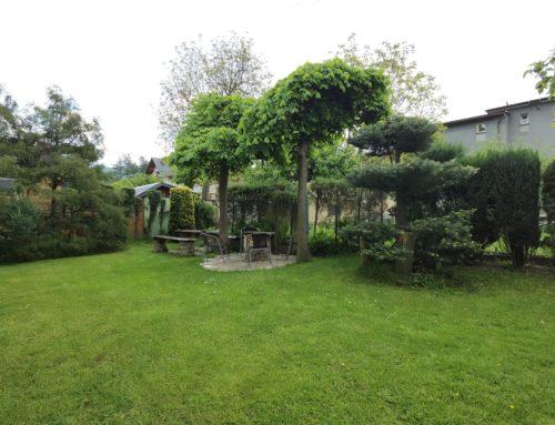 Zdjęcia ogród 2